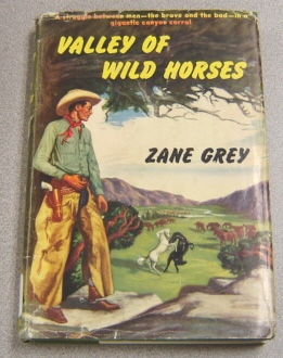 Image for Valley of Wild Horses