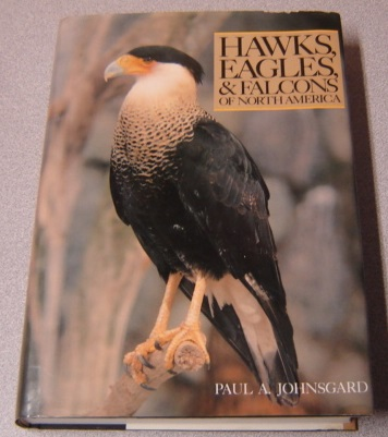 Image for Hawks, Eagles & Falcons of North America: Biology and Natural History