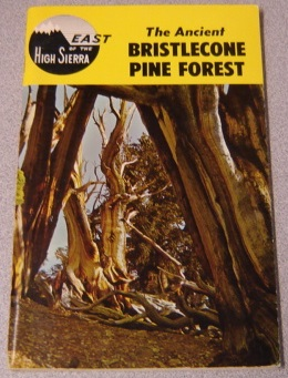 Image for The Ancient Bristlecone Pine Forest