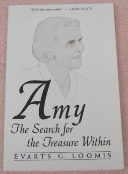 Image for Amy:   The Search for the Treasure Within