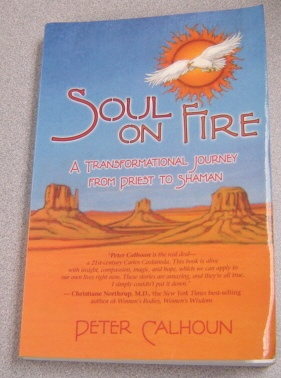 Image for Soul on Fire: A Transformational Journey from Priest to Shaman