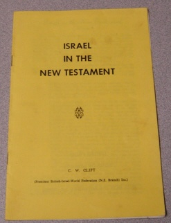 Image for Israel in the New Testament